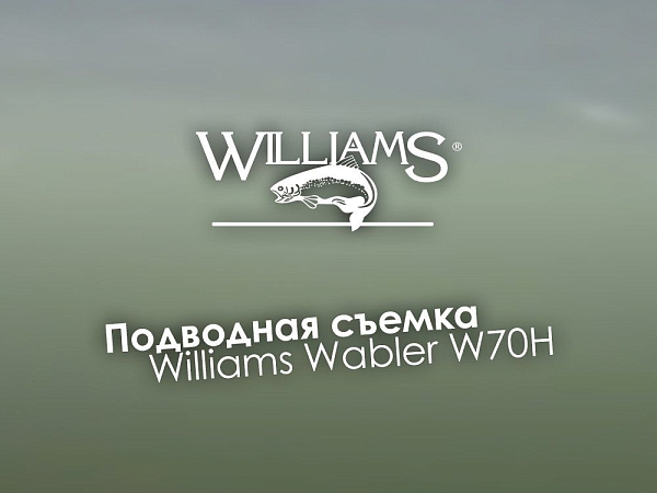 Блесна колебалка на щуку Williams Wabler W70H 28г