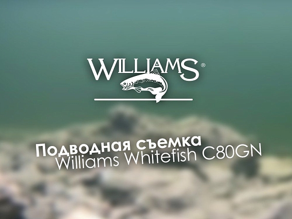Уловистая приманка Williams Whitefish C80GN 28г